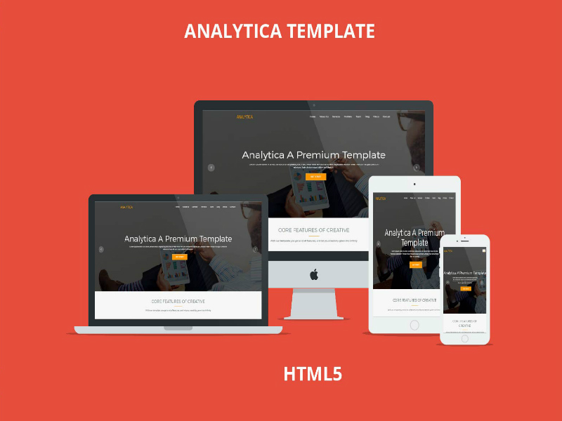 Analytica Business Template