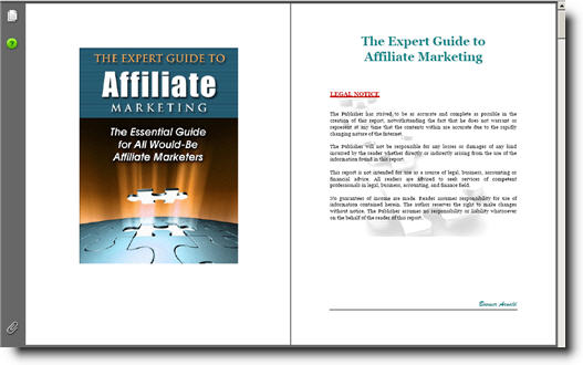 Expert Guide to Affiliate Marketing -Resell Rights