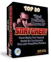 Profitable Keyword Snatcher