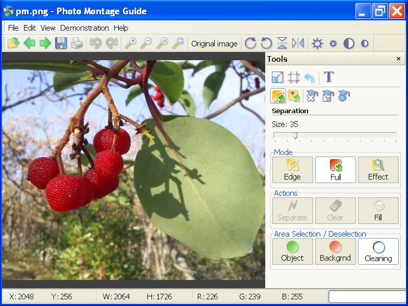 Photo Montage Guide