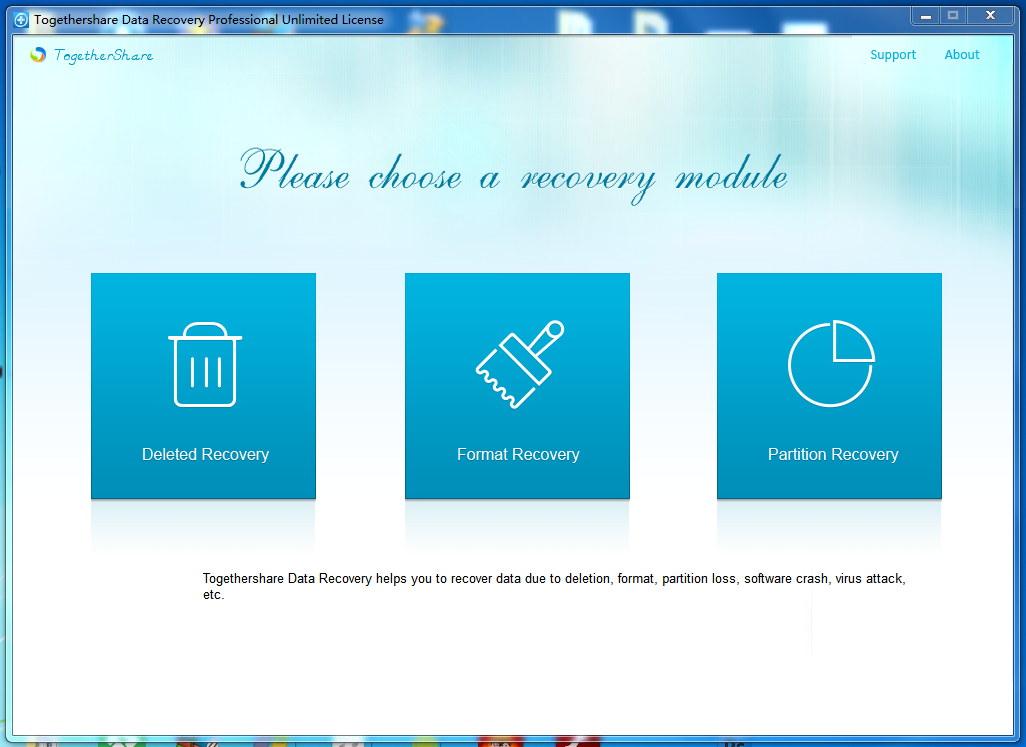 TogetherShare Data Recovery for Windows Family license